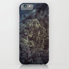 As the summer ends 2 Slim Case iPhone 6s