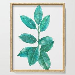 Ficus elastica Serving Tray