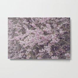 Soft Pastel Pink Azalea Flowers Metal Print