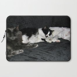 3 cats lounging Laptop Sleeve