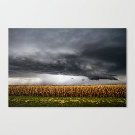 Corn Field - Storm Over Withered Crop in Southern Kansas Canvas Print