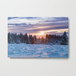 Winter has come Metal Print