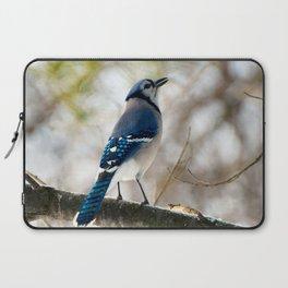 Blue Jay Calling Laptop Sleeve