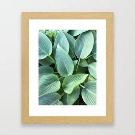 Perfect green leaves Framed Art Print