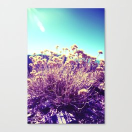 Surrealistic Canvas Print