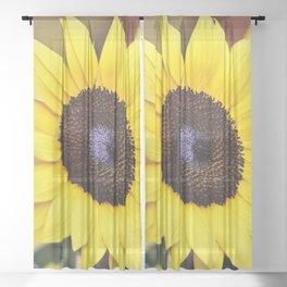 Cute Yellow Sunflower Sitting In The Sun Sheer Curtain