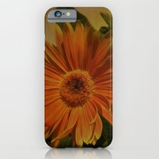 The Beauty Of Nature iPhone 6s Slim Case