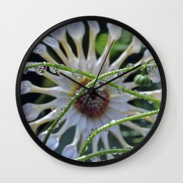 Alien Spores Multiply and Take Over Wall Clock