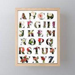 Secret Garden in Alphabet  / with Vintage Fee Framed Mini Art Print