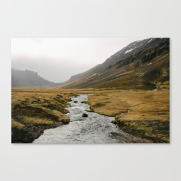wild iceland Canvas Print