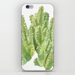 Moroccan Mound Cactus Watercolor iPhone Skin