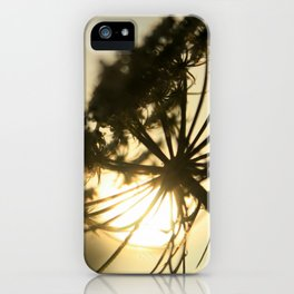 Lace Silhouette iPhone Case