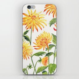 Dahlia Flowers 1 iPhone Skin