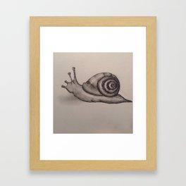 Snail Framed Art Print