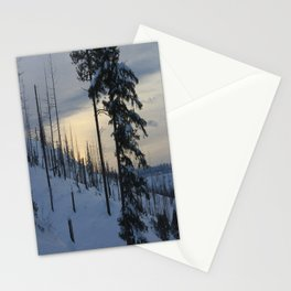 Deeper Drifts Stationery Cards