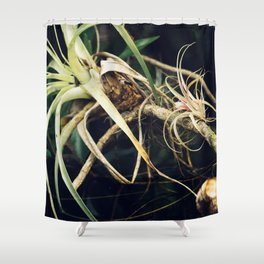 Epiphyte Shower Curtain