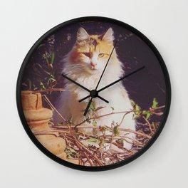 Staring Stranger Wall Clock