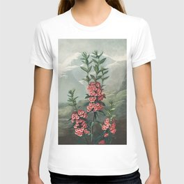 The Narrow–Leaved Kalmia from The Temple of Flora (1807) T-shirt