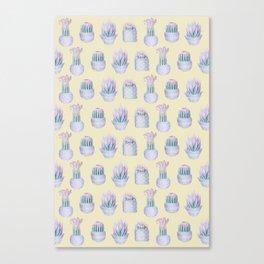 Succulent Yellow Haze Canvas Print