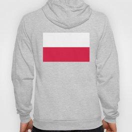 National flag of Poland Hoody