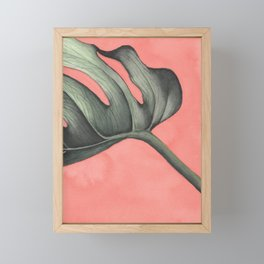 Monstera on Pink Framed Mini Art Print