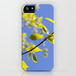 linden leaves, spring iPhone Case