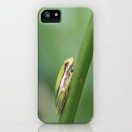 Tiny Tree Frog iPhone Case