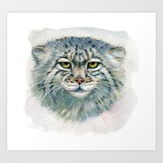 Pallas's cat 862 Art Print