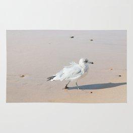 Juvenile Herring Gull Rug