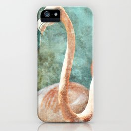 Vintage plumage of a bird iPhone Case
