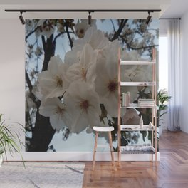 flower and light  - Cherry tree 1 Wall Mural