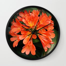 Clivia Miniata - The Orange Beautiful Flower Wall Clock