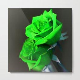 St. Patrick's Day Shamrock-Green Roses Metal Print