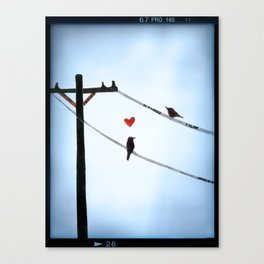 Bird In Love Canvas Print