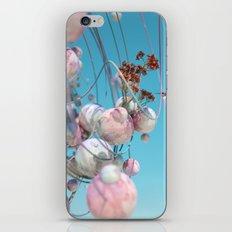 Lania iPhone & iPod Skin