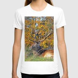 Red Deer Resting T-shirt