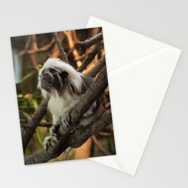 Wise Old Monkey Stationery Cards