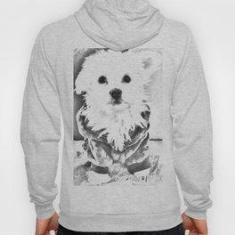 Cute dog Hoody