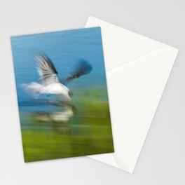 Black skimmer (Rynchops niger) Stationery Cards
