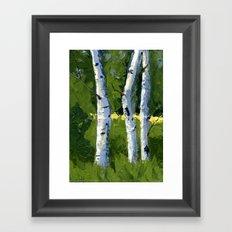 Aspens - Catching the Light Framed Art Print