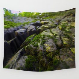 Mossy Rocks Wall Tapestry