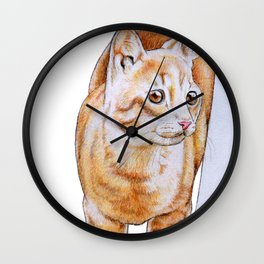 Sweet Tabby Cat Wall Clock