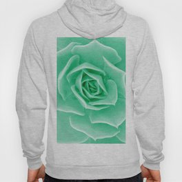 Minty succulent Hoody