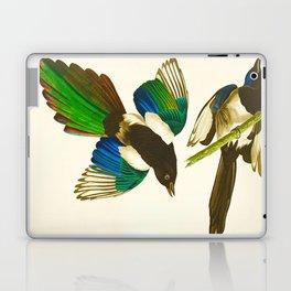 Magpie Vintage Scientific Bird Illustration Laptop & iPad Skin