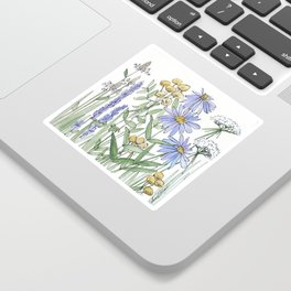 Asters and Wild Flowers Botanical Nature Floral Sticker