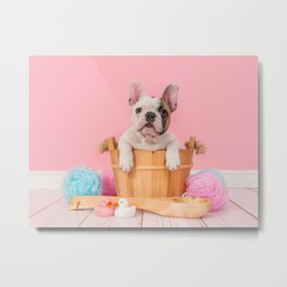 Take a Bath Metal Print