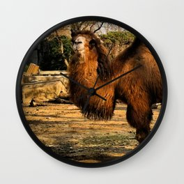 What?? Wall Clock