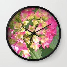 Hydrangea Blossoms Wall Clock