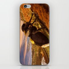 Big Bee iPhone & iPod Skin
