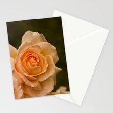 Dew Kissed Rose Floral Stationery Cards